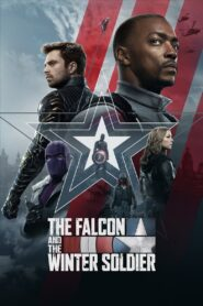 The Falcon and The Winter Soldier ฟอลคอนและวินเทอร์โซลเจอร์