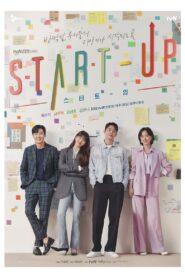 สตาร์ทอัพ (Start Up)